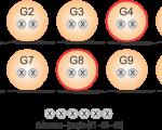 esquema_grupo_20
